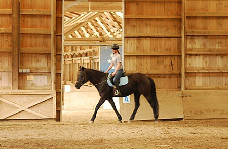 Lighted Arena and Attached Round Pen