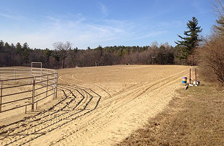 Outdoor Jumping Arena and Round Pen